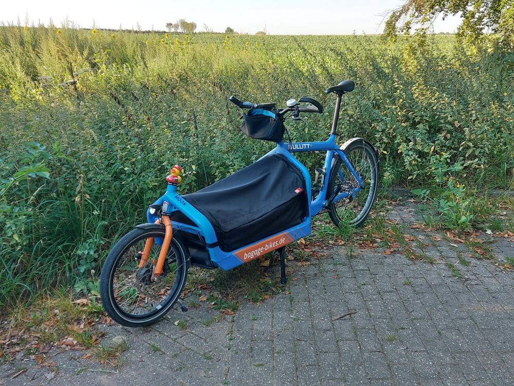 #mdRzA #bluemoon#entchen #königsdorf #frechen #nebenstrecke #natur #gras #brennesseln #pflanze #waldweg #feld