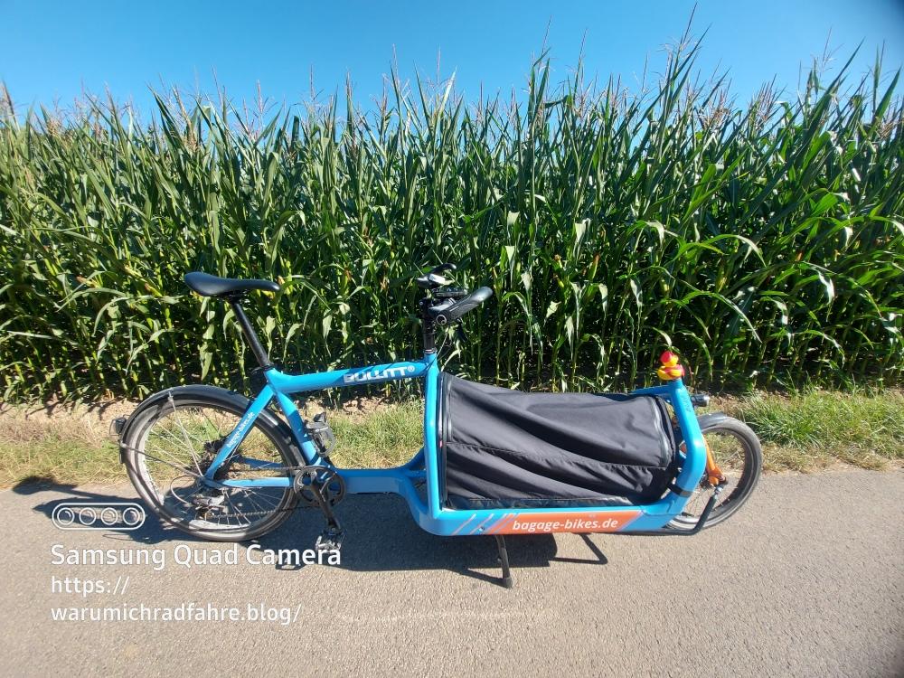 landwirtschaft jülicher börde Mais bluemoon