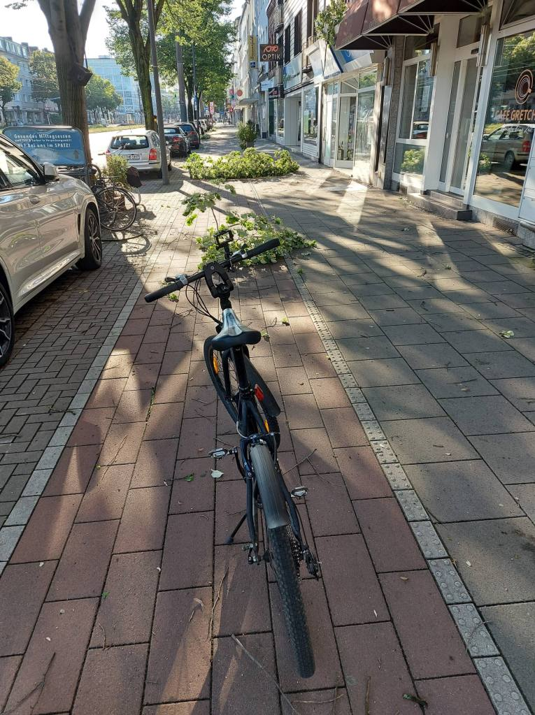#Köln, #AachenerStraße, #Ast, #Sturm, #Radweg,